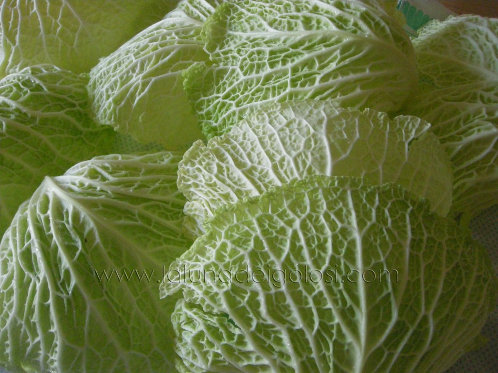 Involtini con foglie di verza: foglie di verza