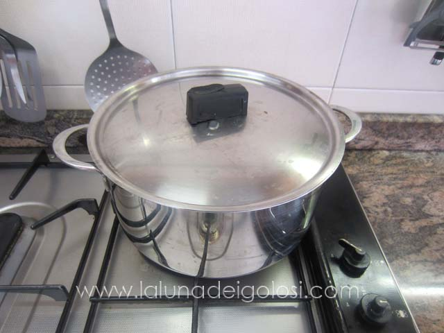 copri e lascia cuocere a fiamma moderata