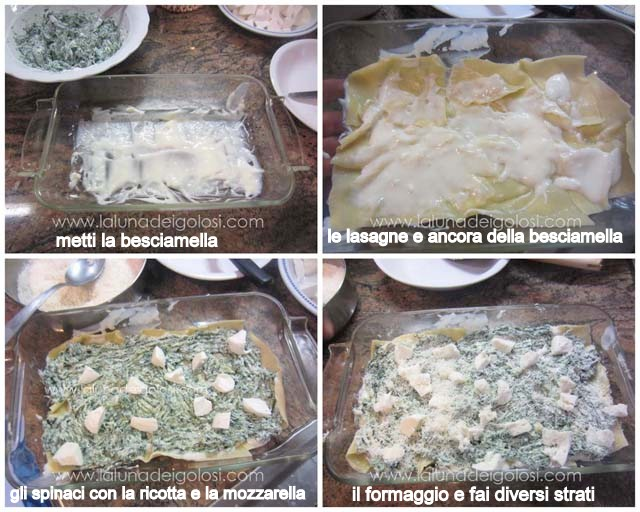 in una pirofila metti la besciamella, le lasagne, dell'altra besciamella, la ricotta con gli spinaci, la mozzarella e fai diversi strati